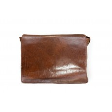 Eleganza Div Brown Messenger Bag
